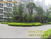 东立光华杏林-小区环境图[1]