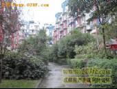 河畔华苑-小区环境图[1]