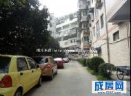成都龙泉区-驿都公寓-2室1厅1卫2阳台出租