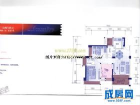 戛纳湾滨江-户型图